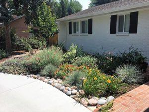 Colorado Residential Planting